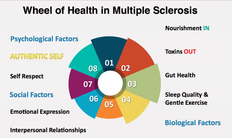 wheel-of-health-ms